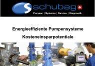 Energieeffiziente Pumpensysteme - schubag AG
