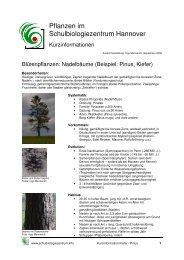 Kurzinformation Pflanzen im Schulbiologiezentrum