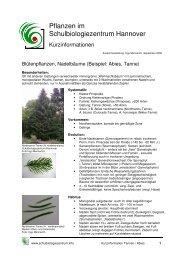 Kurzinformation Pflanzen im Schulbiologiezentrum: