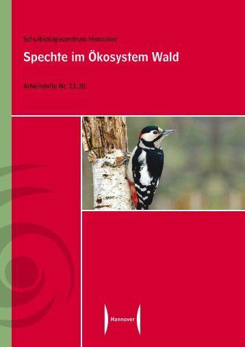 Spechte im Ökosystem Wald (Pdf) - Naturpark Bayerischer Wald
