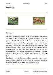 Der Hirsch - Schule Schmerikon