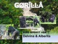 Gorilla - Schule Nottwil