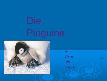 Pinguine - Schule Nottwil