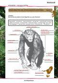 Schimpansen - Disney - Page 5