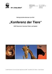 WWF Hintergrundinfos KdT_Schulen - SCHULKINO.at
