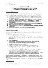 Orientierungshilfe Frühjahr 2008 schriftlich - Lehrstuhl für ...