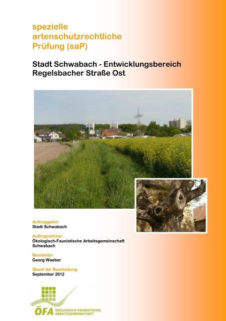 spezielle artenschutzrechtliche Prüfung - Stadt Schwabach