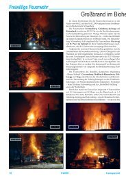 Großbrand im Bioheizwerk Schwa - Schwanberg