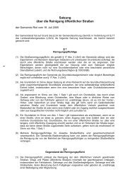 Satzung über die Reinigung öffentlicher Straßen