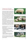 De l'agneau. - Schweizer Fleisch - Page 3