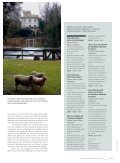 CHÂTEAU CAPION SAXENBURG WINES - Nauer Weine - Seite 7