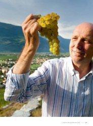 Südliches Paradies - Schweizerische Weinzeitung