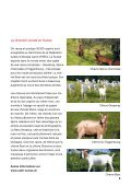 """Brochure """"Du cabri"""" - Schweizer Fleisch - Page 3"""