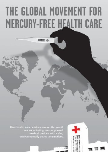 The Global Movement For Mercury-Free Health Care - Philippine ...