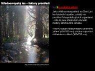 Středoevropský les – faktory prostředí