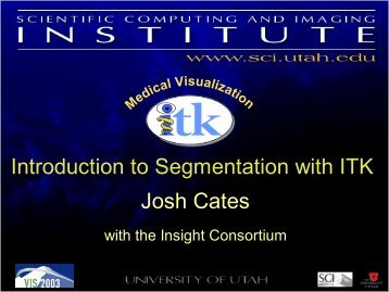 Medical Visualization with ITK - Scientific Computing and Imaging ...