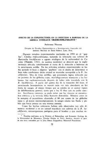 EFECTO DE LA ESPLENEC'I'Ü'MIÁ EN LA INFECCION A ... - SciELO
