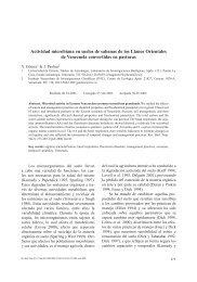 Actividad microbiana en suelos de sabanas de los Llanos ... - SciELO