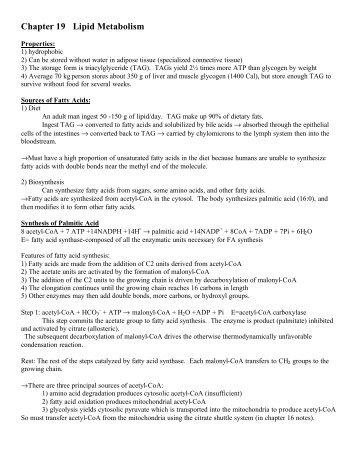 Chapter 19 Lipid Metabolism