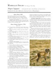 Alopex lagopus - ASM Online Journals