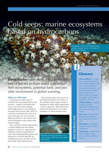 Cold seeps: marine ecosystems based on ... - Science in School