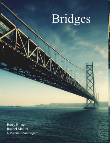 Bridges - the Scientia Review