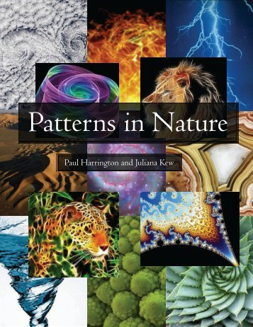 Patterns in Nature - the Scientia Review