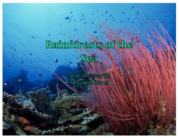 Rain Forests of the Sea - the Scientia Review