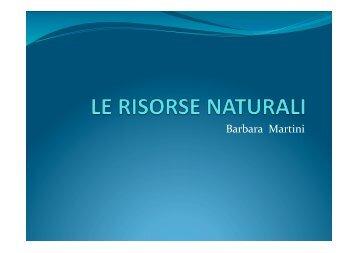 risorse naturali.pptx