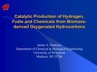 Biomass Conversion - James Dumesic - University of Wisconsin ...