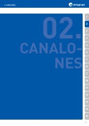 2. CANALONES. - Fontgas