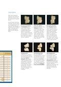 deutsch: Antaris, Vivodent, Postaris, Orthotyp, Orthosit - Seite 3