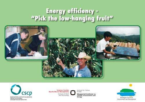 "Energy efficiency - ""Pick the low-hanging fruit"""
