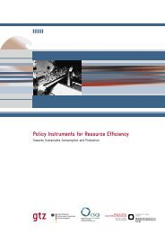 Policy Instruments for Resource Efficiency - Collaborating Centre on ...