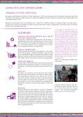workstudio report - Collaborating Centre on Sustainable ... - Page 5