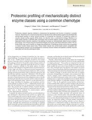 Proteomic profiling of mechanistically distinct enzyme classes using ...