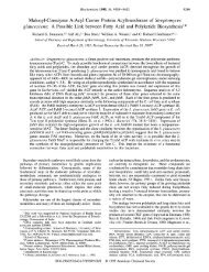 A Possible Link between Fatty Acid and Pol - American Chemical ...