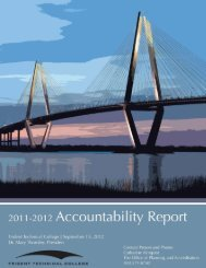 2011-2012 Accountability Report - Trident Technical College