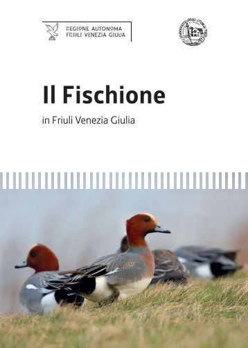 Il Fischione - Regione Autonoma Friuli Venezia Giulia