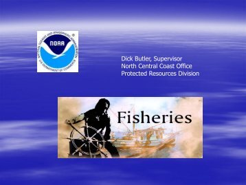 NOAA's National Marine Fisheries Service Biological Opinion for ...