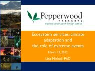 Ecosystem services, climate adaptation and the role of extreme events