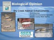 Dry Creek Habitat Enhancements - Sonoma County Water Agency