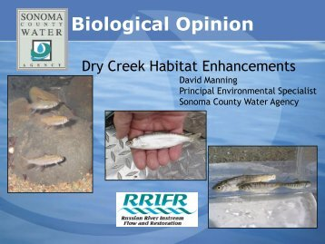 Dry Creek Habitat Enhancements - Sonoma County Water Agency