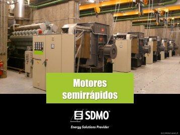 Motores bajo rpm - SDMO