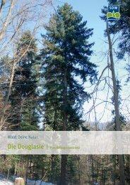 Douglasie - Schutzgemeinschaft Deutscher Wald