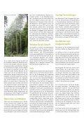 Douglasie - Schutzgemeinschaft Deutscher Wald - Seite 3