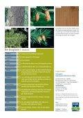 Douglasie - Schutzgemeinschaft Deutscher Wald - Seite 4