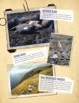 Download curriculum PDF - San Diego Zoo Safari Park - Page 6