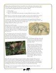 ELEPHANT ODYSSEY - San Diego Zoo Safari Park - Page 6