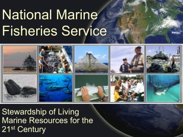 Michael Abbey presentation - Seafood Choices Alliance